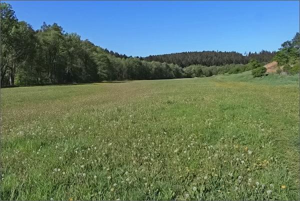 Niva Bílého potoka pod obcí Křoví