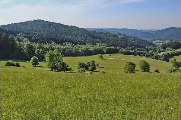 Přírodní památka Javorův kopec