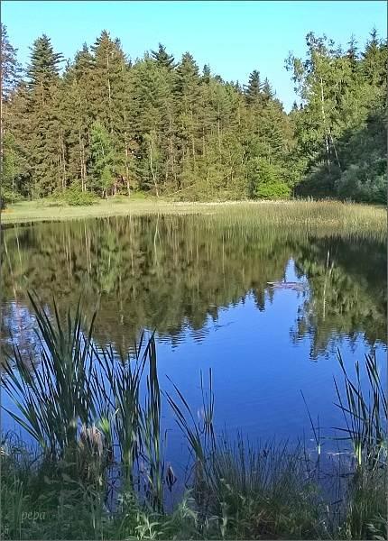 Přírodní památka Noldenteich