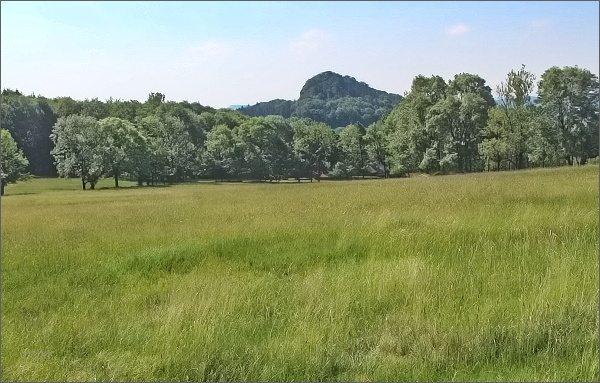 Zlatý vrch od Sedla pod Studencem