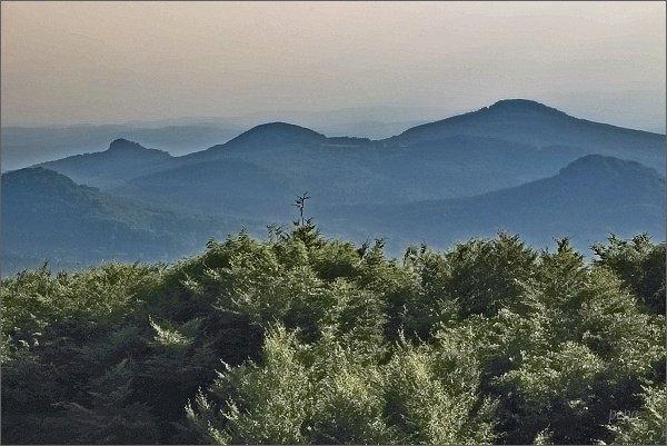 Studenec, Javorek a Zlatý vrch z Jedlové