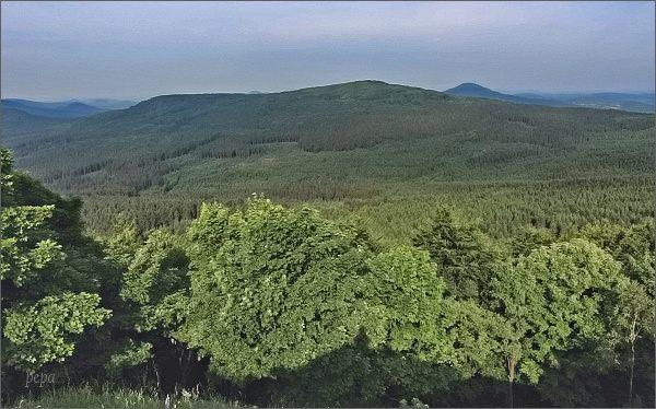 Pěnkavčí vrch a Jedlová z Luže