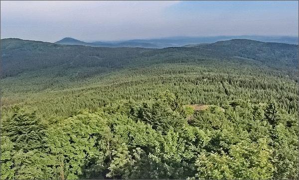 Nekonečné lužickohorské lesy z Luže, vlevo Jedlová