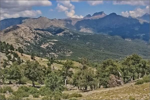 Další a další pohledy k Monte Cintu...