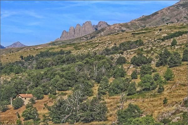 Pohled k horám. Hřeben Cinque Frati (Pět mnichů)