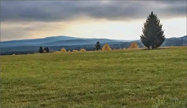 Krušné hory od Oberjugelu