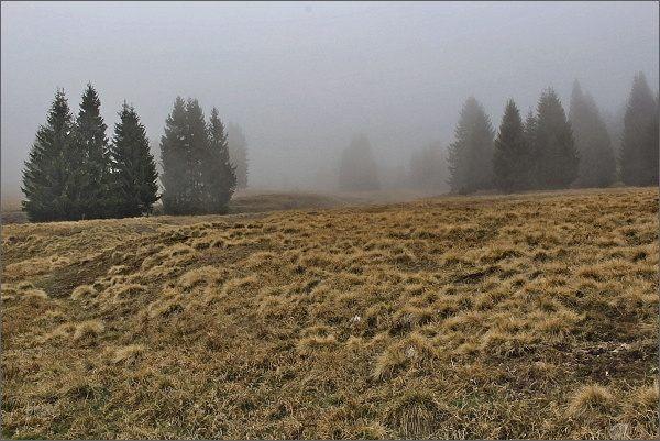 Krušné hory, v údolí Rolavy