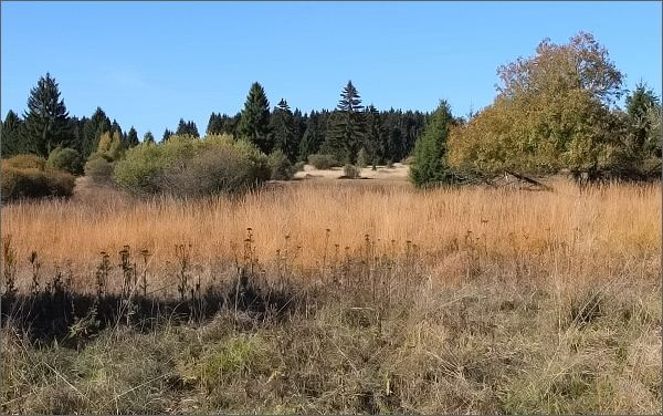 Krajina Slavkovského lesa v okolí Pramenů