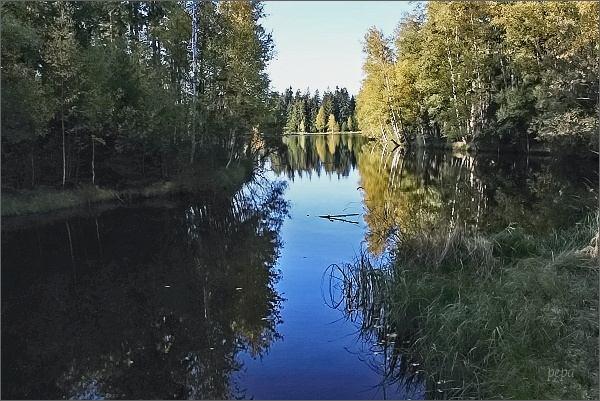 Slavkovský les, Kladská