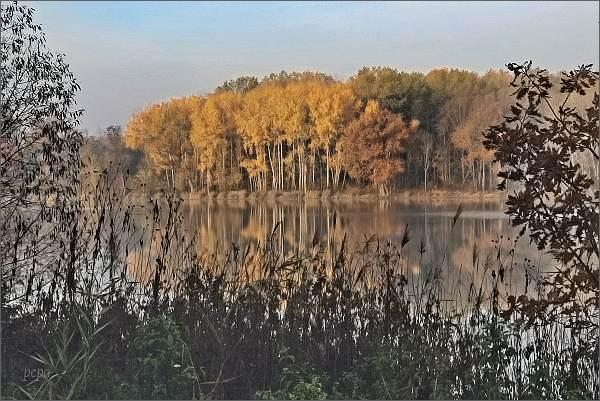 Pouzdřanský rybník