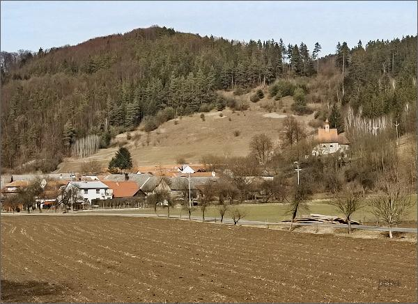 Dolní Čepí a kostel sv. Václava