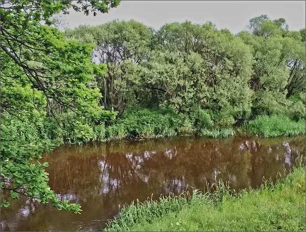 Nová řeka v NPR Stará a Nová řeka