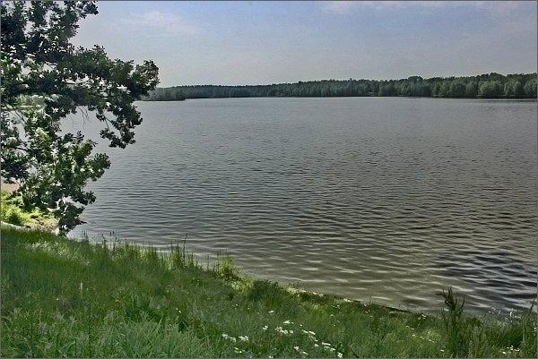 Rybník Krčín