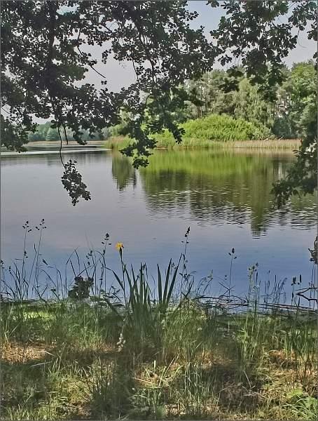 Rybník Hliníř