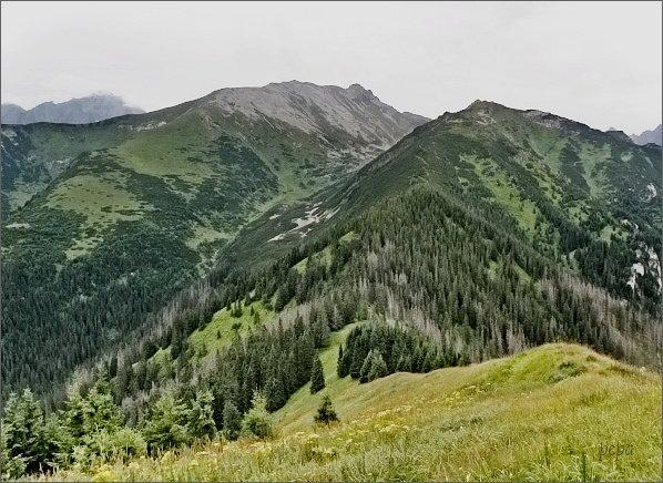 Široká, Široká dolina a Zámky (vpravo) ze Zadnej kopy