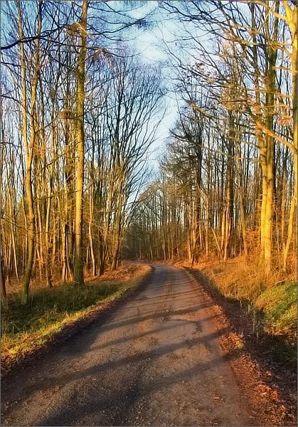 Cesta do Pavlovic