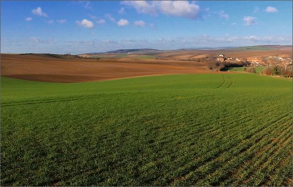 Krajina Litenčické pahorkatiny (Kojátky)