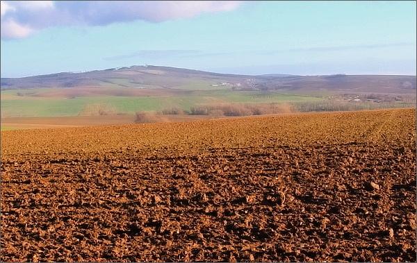 Krajina Litenčické pahorkatiny (Hradisko)