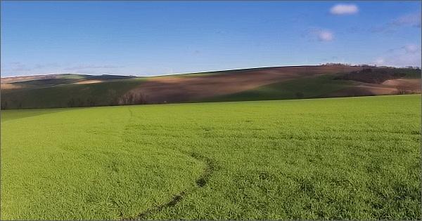 Litenčická pahorkatina, krajina u Letonic