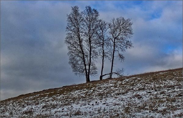 Krajina u Horních Hamrů