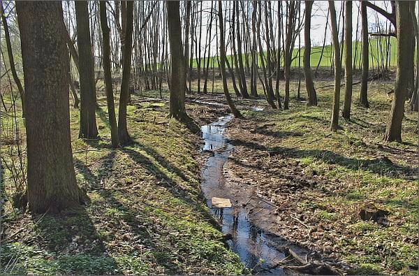 Biskupický potok