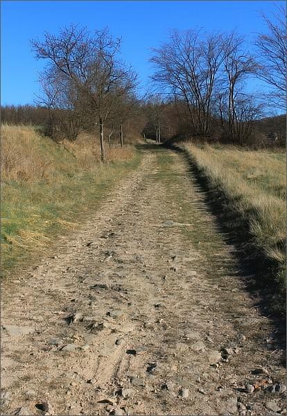 Stará cesta