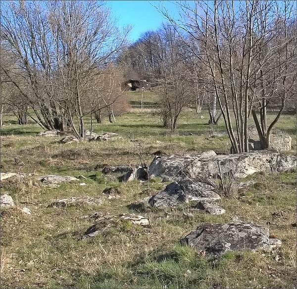 Přírodní památka Synalovské kopaniny