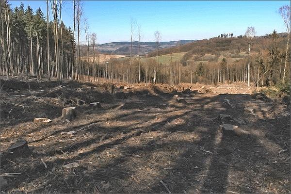 Skrze vymýcené lesy se otevírají pohledy do kraje