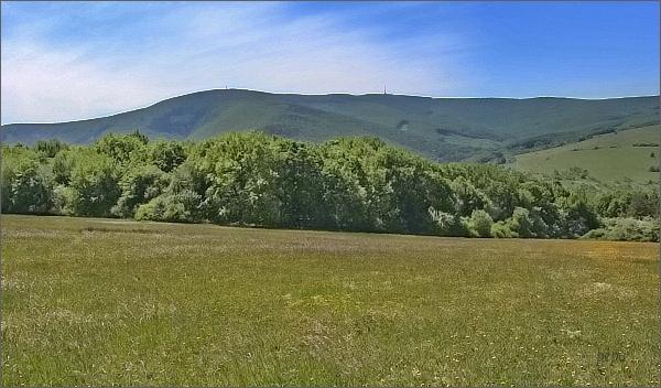 Velká Javořina a Jelenec z Nové hory