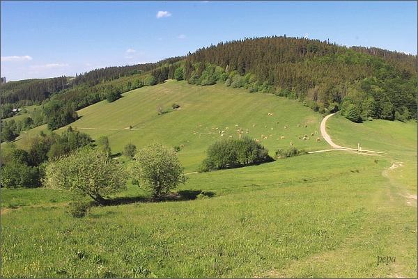 Lopenické sedlo a Mikulčin vrch
