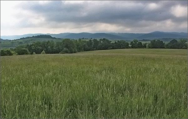 Vizovická vrchovina