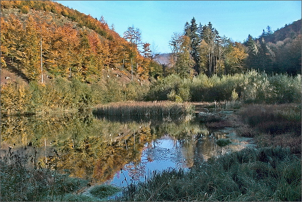 Údolí Duraňského potoka