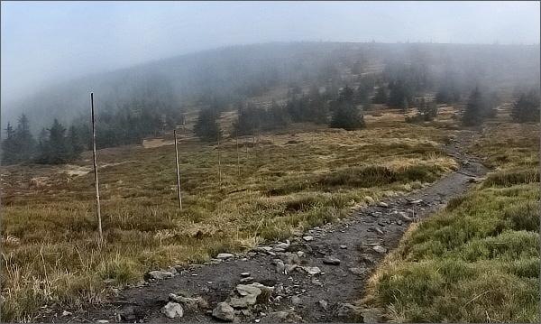 Jesenickou mlhou od Moravice k Bílé Opavě