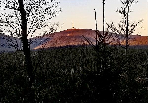 Pohled zpod Ovčího vrchu k Pradědu