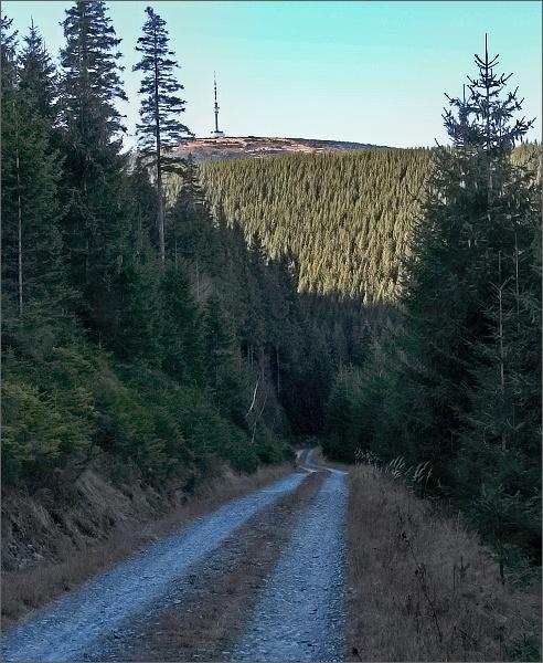 Praděd z Dřevařské cesty