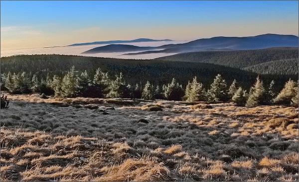 Pod Pradědem, pohled k severozápadu. Na horizontu Králický Sněžník, vpravo Vozka a Keprník