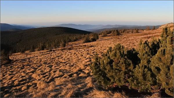 Pod Pradědem, pohled k severozápadu. Na horizontu Studniční vrch nad Jeseníkem