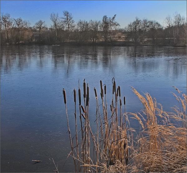 Přírodní památka Cukl a Rozsečské rašeliniště