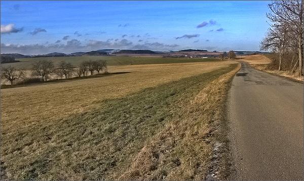 Cesta do Kněževse. Na horizontu Horní les