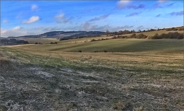 Horní les od Trpína