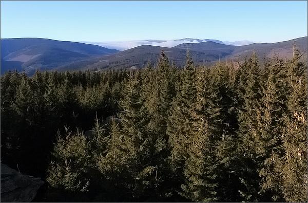 Žárový vrch, pohled k hřebeni Keprníku