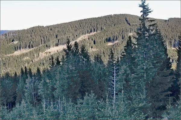 Žárový vrch z Lyry