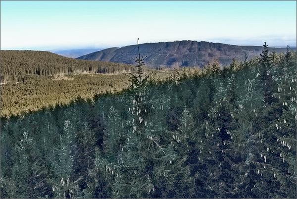 Vysoká hora z Lyry