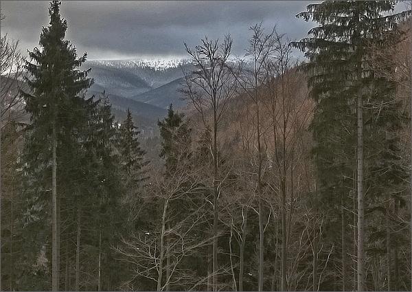Údolí Střední Opavy