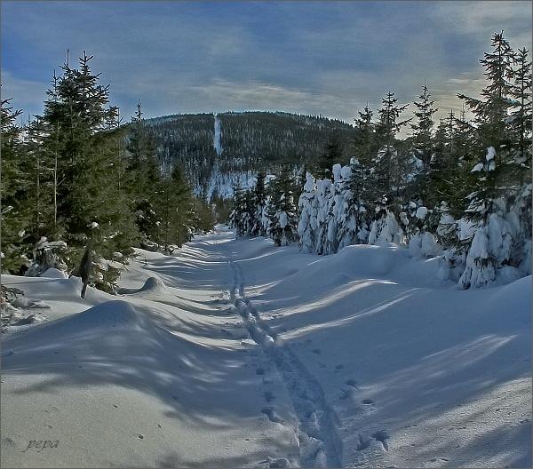 Cestou z Orlíku, pohled k Medvědímu vrchu