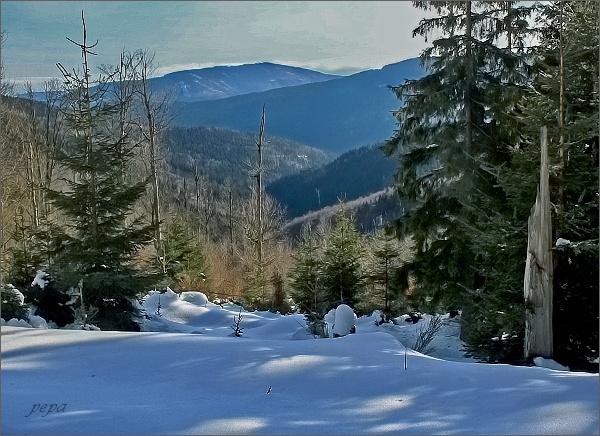Vysoká hora zpod Medvědího vrchu