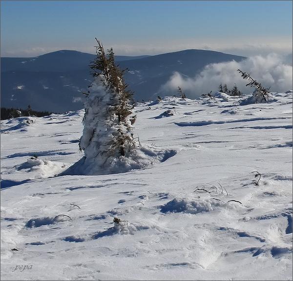 Medvědí vrch (vlevo) a Jelení loučky z Keprníku