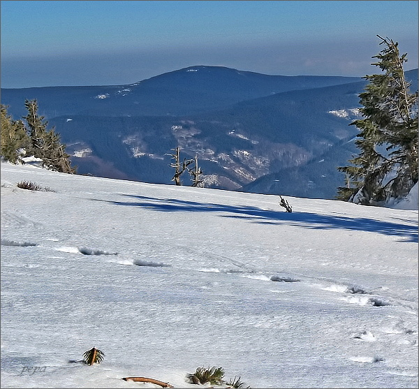 Medvědí vrch z Keprníku