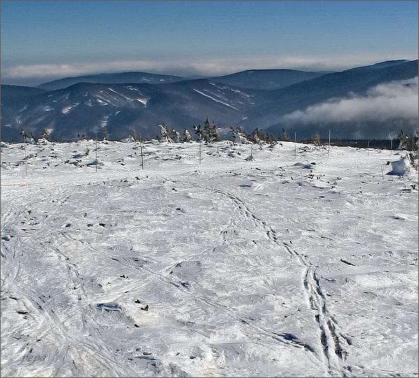 Žárový vrch (na horizontu vlevo) a Lyra z Keprníku. V popředí Videlské sedlo