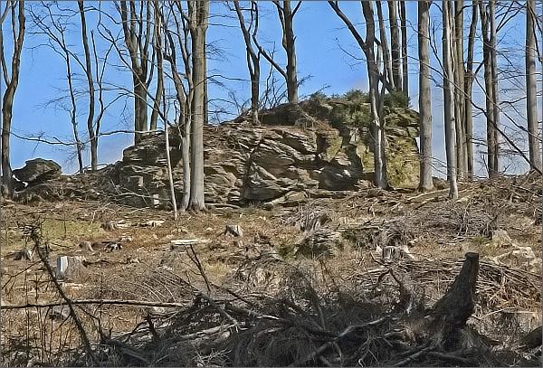 Z obnaženého lesa vykukují osamělá skaliska